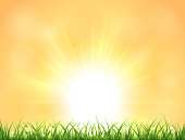 Nature background with Sun, grass and flowers, illustration.