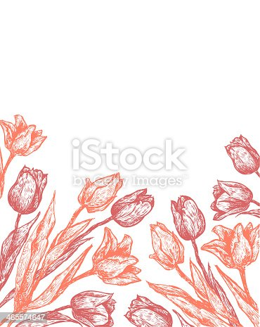 background with pink hand drawn tulips