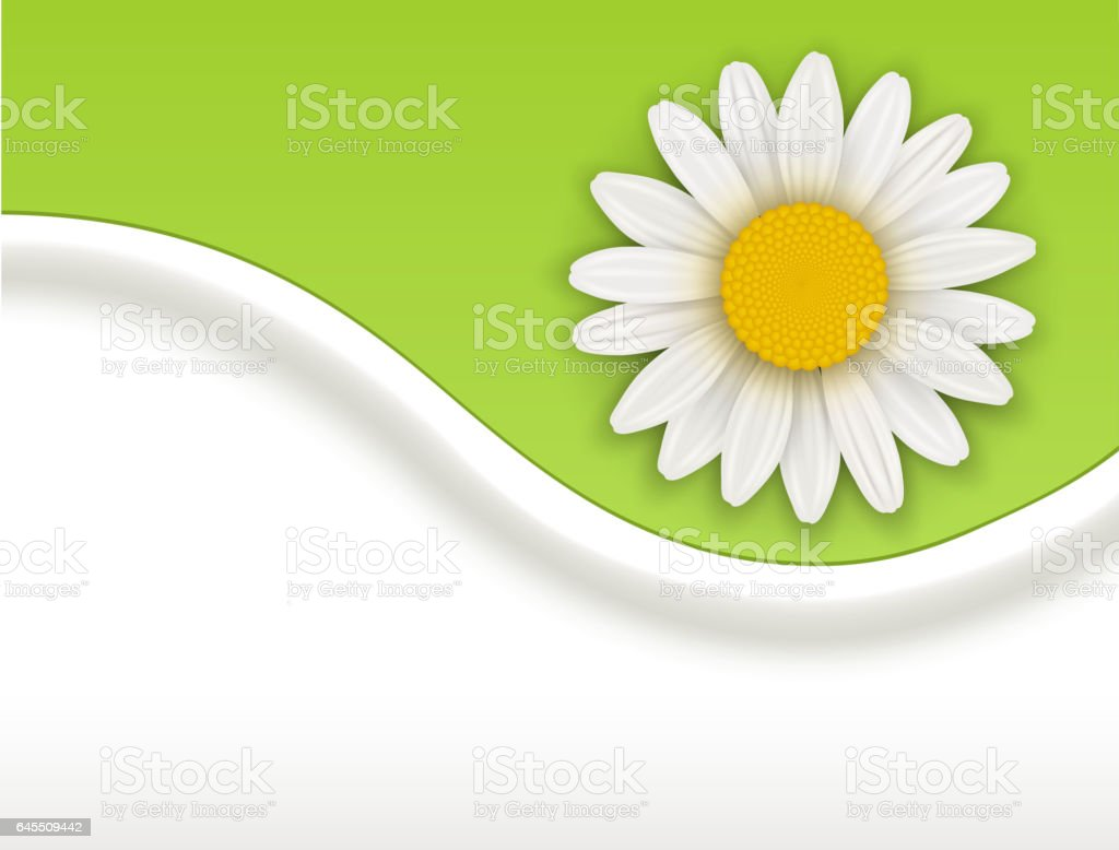 Background with white flower vector art illustration