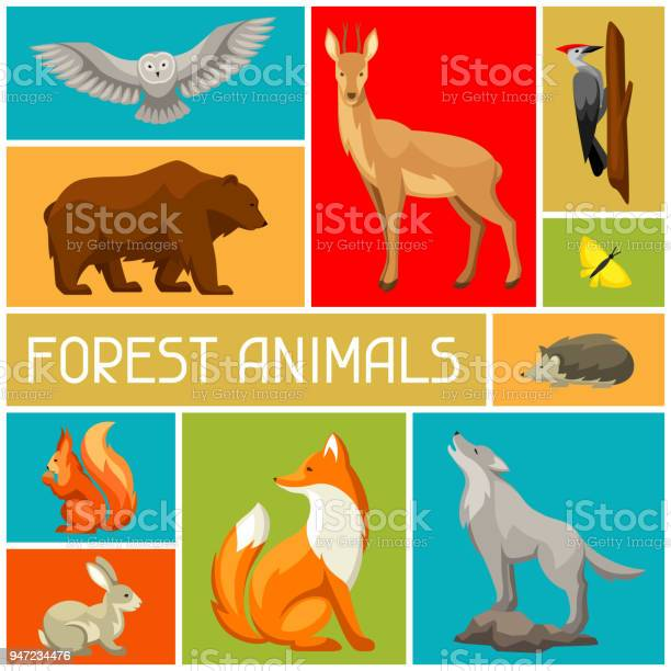 Background with woodland forest animals and birds stylized vector id947234476?b=1&k=6&m=947234476&s=612x612&h=xeknd85uqffkyvich2bdza6kdczqndtezh6zqwzcvpo=