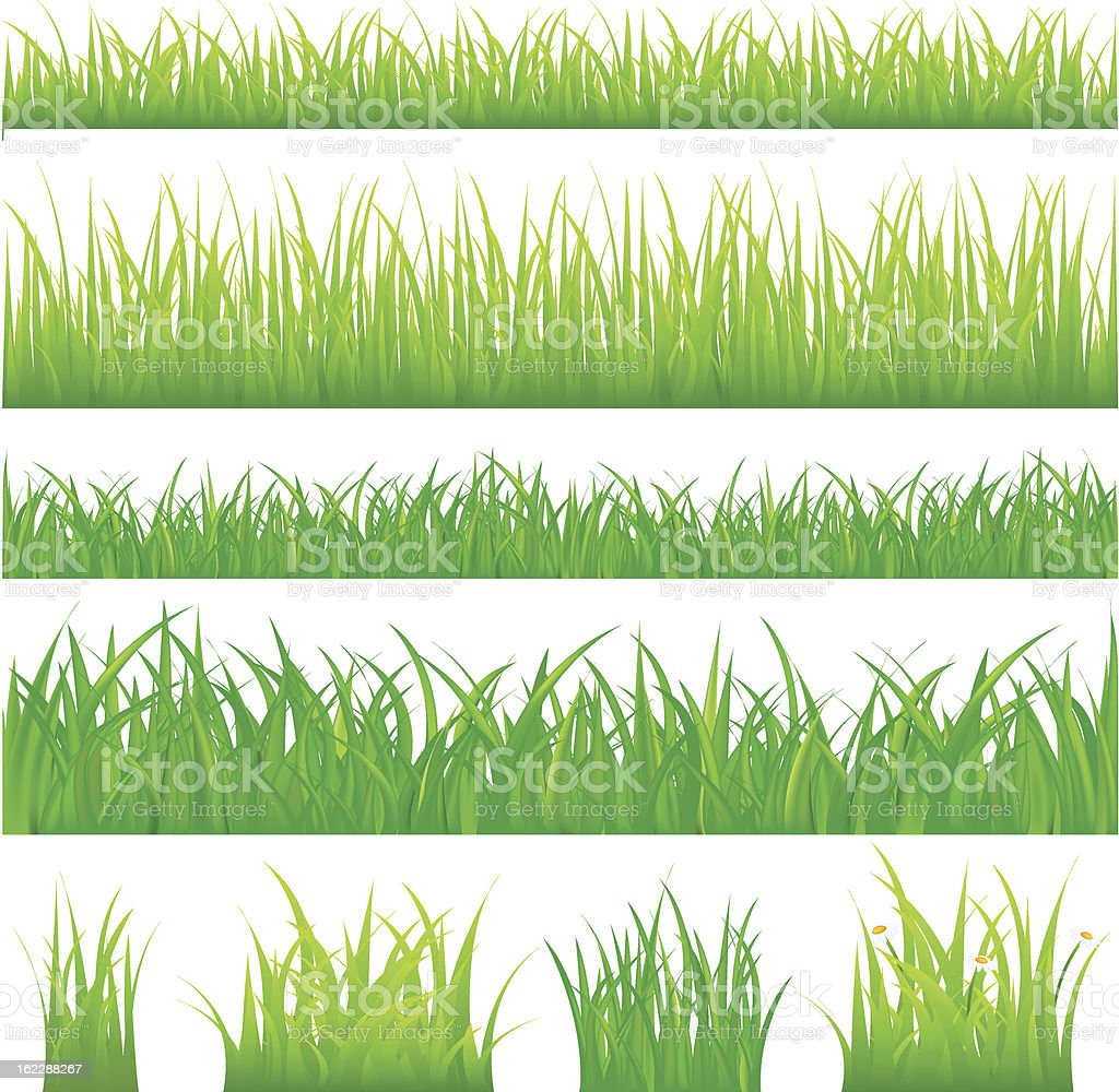 Backgrounds Of Green Grass And Tufts vector art illustration