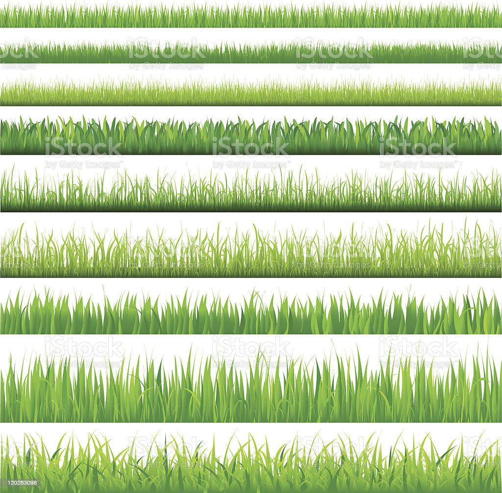 Backgrounds Of Green Grass vector art illustration