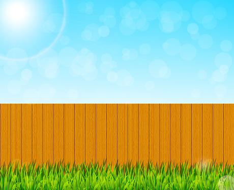 Backyard garden background