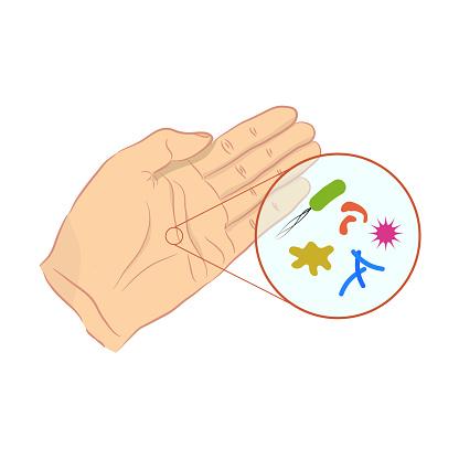 Bakterien Auf Der Haut Bekämpfen