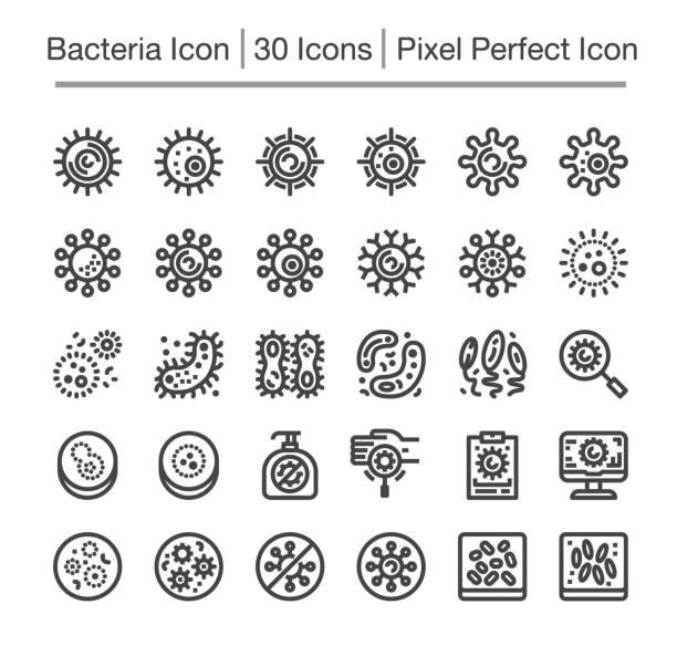ilustrações de stock, clip art, desenhos animados e ícones de bacteria icon - amiba