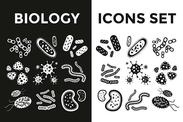 ilustrações, clipart, desenhos animados e ícones de bactéria vírus preto e branco, vector conjunto de ícones - molduras decorativas