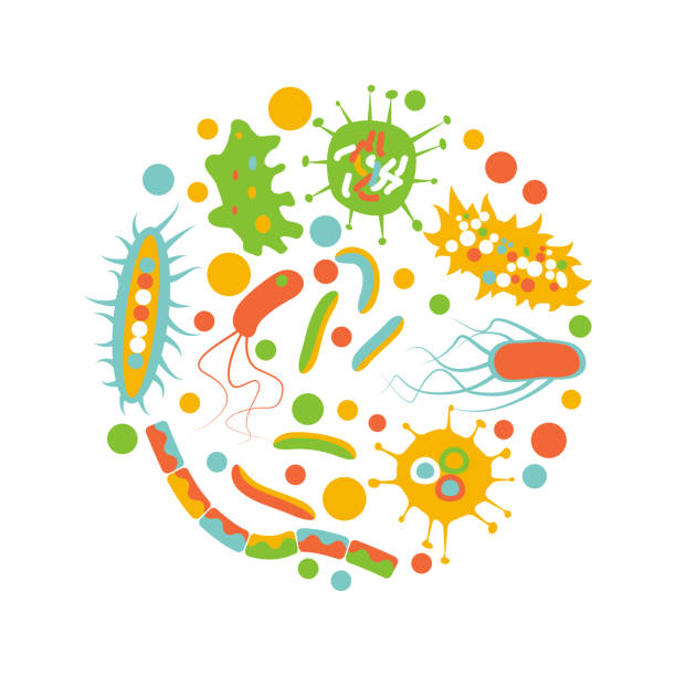bacterial microorganism in a circle Bacterial microorganism in a circle isolated on white background. Flat style. Stock vector illustration of different germs, primitive organisms. microbiology stock illustrations