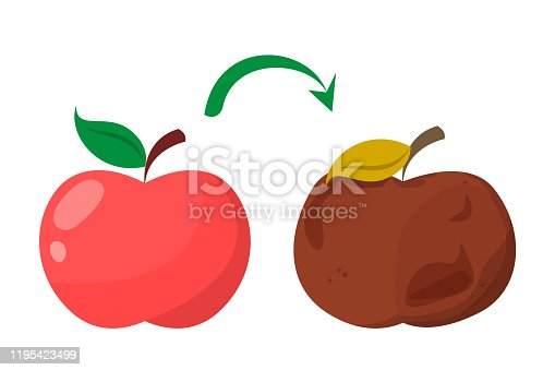istock Bad rotten apple. Red fresh fruit become bad 1195423499