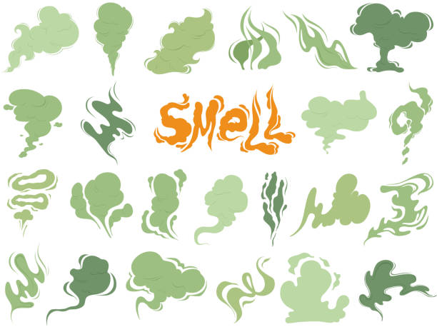 Bad smell. Steam smoke clouds of cigarettes or expired old food vector cooking cartoon icons Bad smell. Steam smoke clouds of cigarettes or expired old food vector cooking cartoon icons. Illustration of smell vapor, cloud green aroma scented stock illustrations