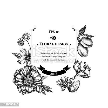 Badge design with black and white almond, poppy flower, tilia cordata stock illustration