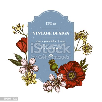 Badge design with colored almond, poppy flower, tilia cordata stock illustration