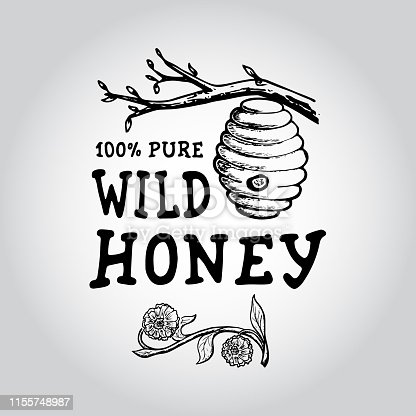 Badge Honey. Hand drawn bee, flower, hive, glass jar. Label  template. Design fashion apparel print. Graphic vintage illustration.