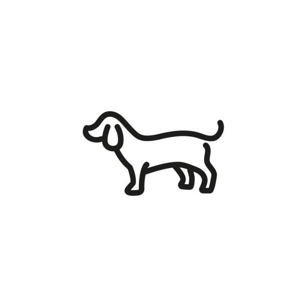 bildbanksillustrationer, clip art samt tecknat material och ikoner med grävling hund ikon - tax