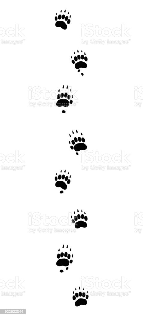 Badger tracks. Typical footprints with long claws - isolated black icon vector illustration on white background. vector art illustration
