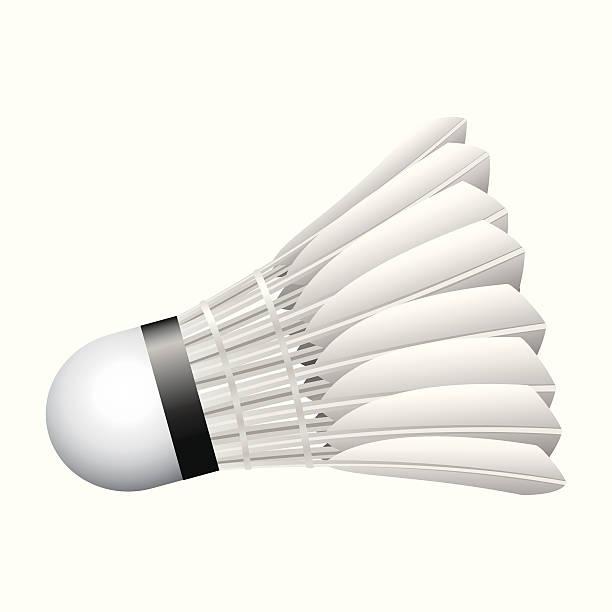 Bola de Badminton - ilustração de arte vetorial