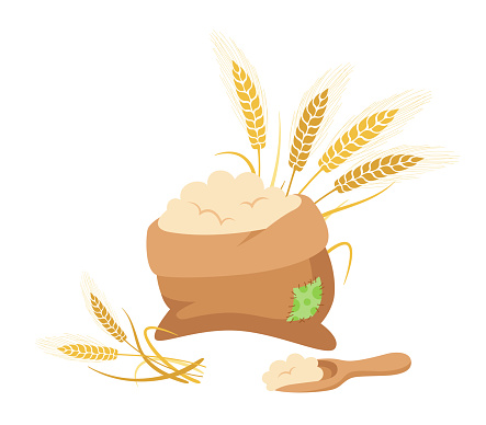 Bag of flour and wheat ears wooden scoop vector