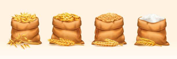 ilustrações de stock, clip art, desenhos animados e ícones de bags with wheat and rye, barley and oat, flour - inteiro