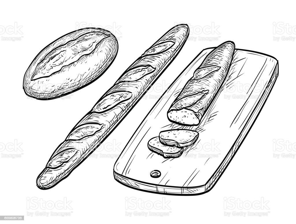 Baguette et pain rustique. - Illustration vectorielle