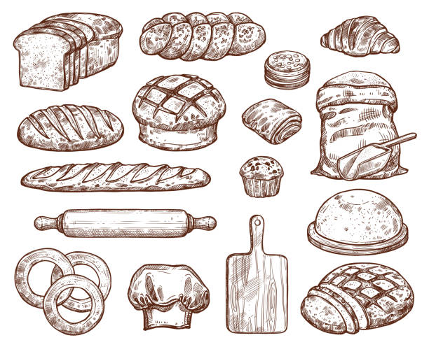 Bakery set with a lot of types fresh bread. Bakery set with a lot of types fresh bread. Images for bakeshop or bakehouse. Cooking utensils for baking and wheat. Fresh pastry baguette, croissant, loaf, pancake, bun, cake, bread, bagel. Also wooden board, white flour, and rolling pin. bread drawings stock illustrations