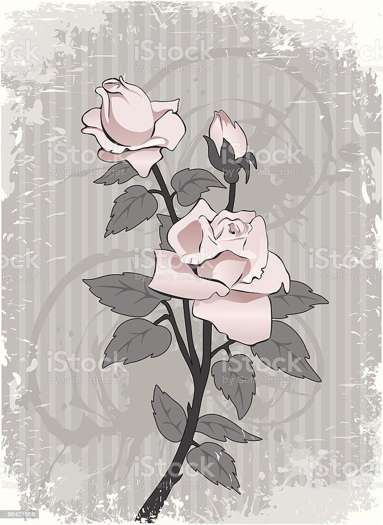 Bakground mit Rosa rose Lizenzfreies bakground mit rosa rose stock vektor art und mehr bilder von abstrakt