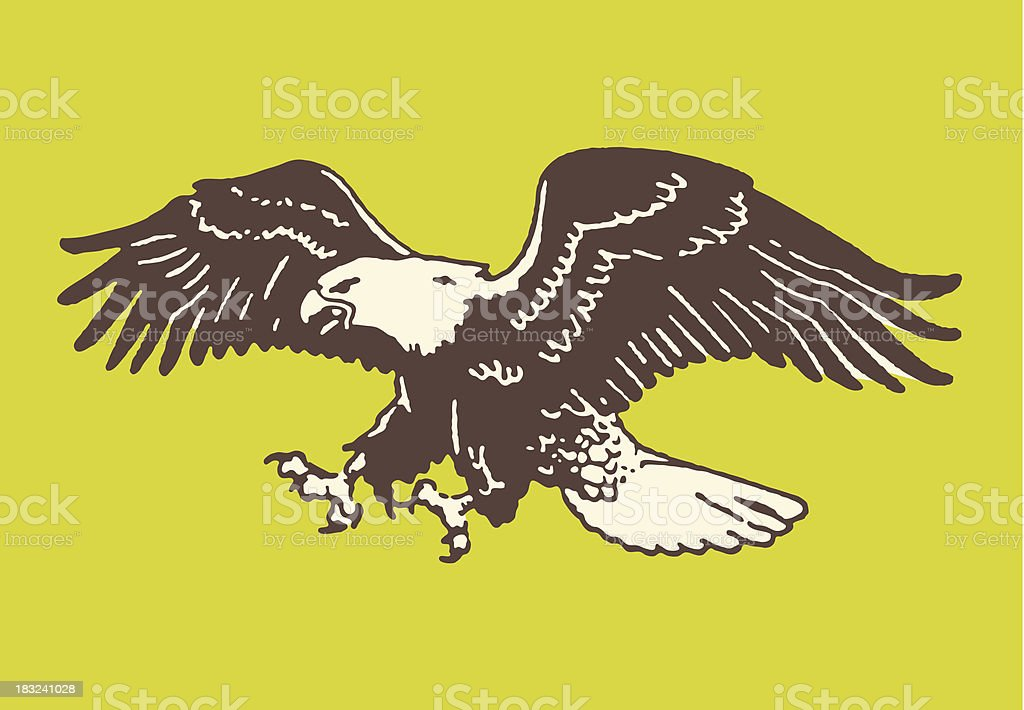 Bald Eagle About to Land vector art illustration
