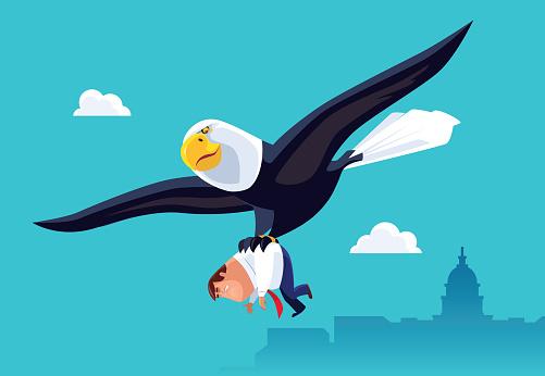bald eagle catching businessman