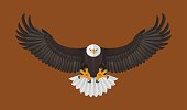 Bald Eagle flying, Vector illustration