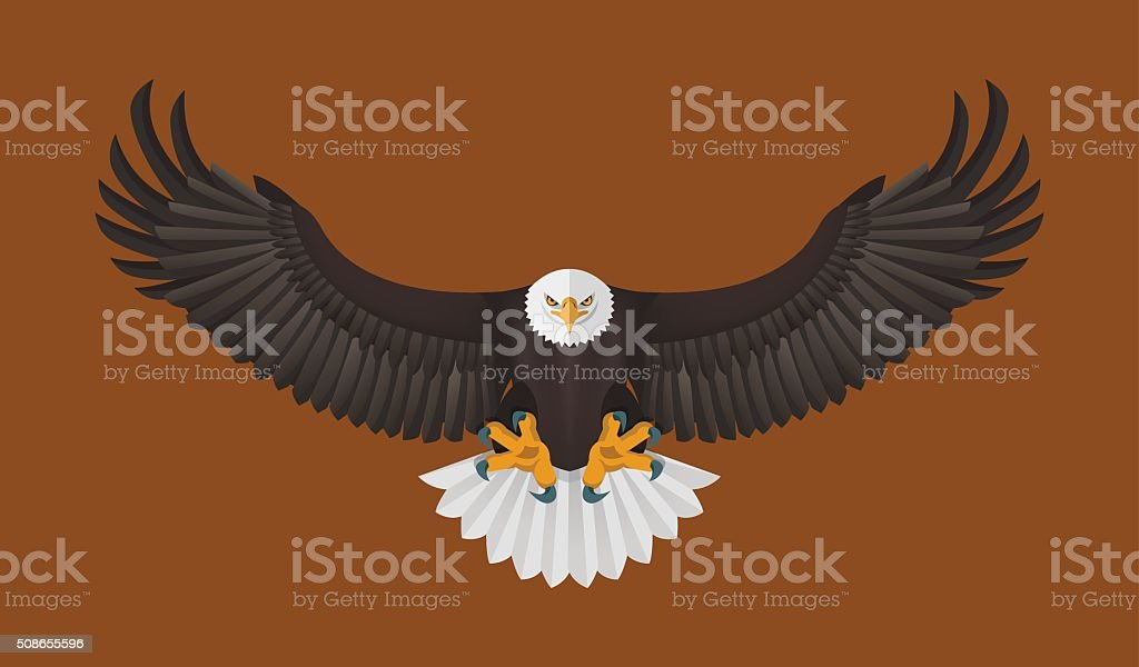 Bald Eagle flying, Vector illustration vector art illustration