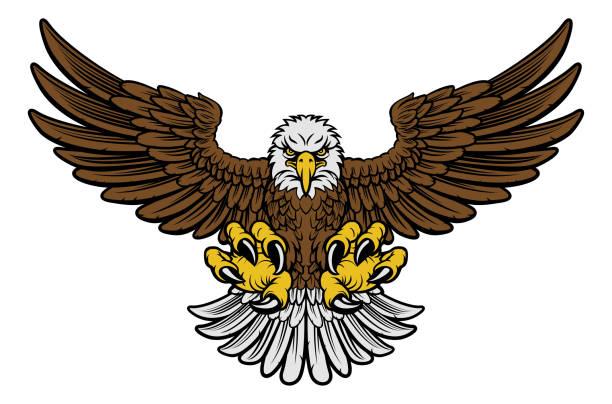 illustrations, cliparts, dessins animés et icônes de mascotte aigle à tête blanche - tatouages oiseaux
