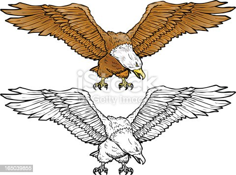 Vector illustration of an Eagle. 2 spot colors plus black. Simple gradients and shapes for easy printing and separating. Black and white outline version also included. File formats: EPS and 300dpi JPG