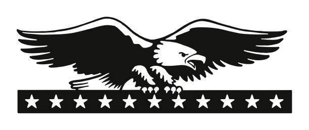 illustrations, cliparts, dessins animés et icônes de pygargue à tête blanche - aigle