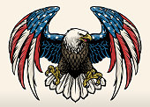 vector of bald eagle with america flag color
