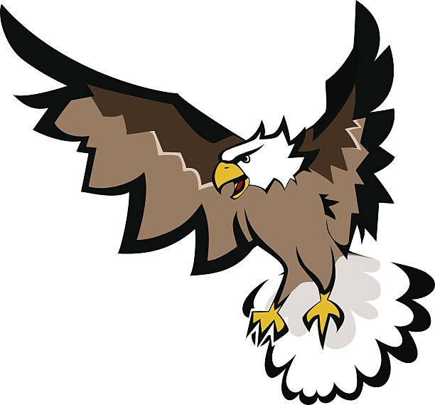 Bald eagle with open wings. vector art illustration