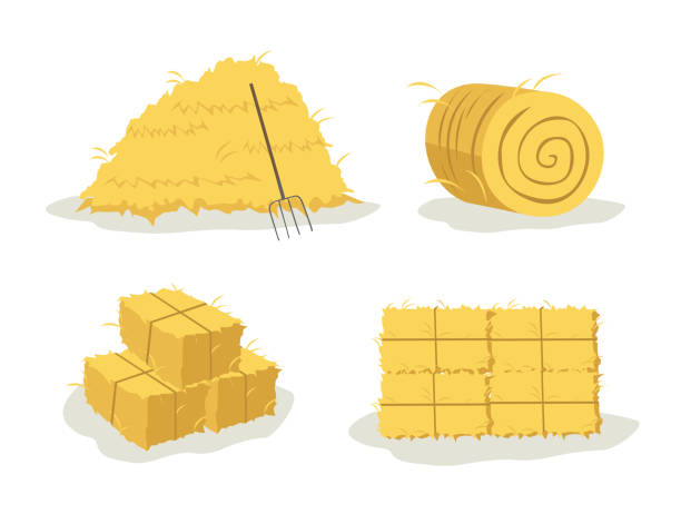 bale of hay different illustration of bale (rounded, stacked, and with pitchfork) hay stock illustrations