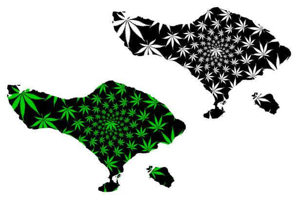 bali (unterteilungen von indonesien, provinzen von indonesien) karte ist entworfen cannabis blatt grün und schwarz, bali (kleine sunda inseln) karte aus marihuana (marihuana, thc) laub, - denpasar stock-grafiken, -clipart, -cartoons und -symbole