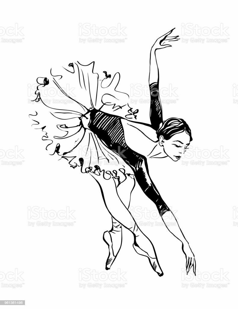 Ballerina Girl Dancing Black And White Sketch Ballet Vector Stock Dance Moves Diagram Royalty