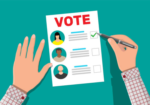 ballot paper with candidates. - ballot stock illustrations