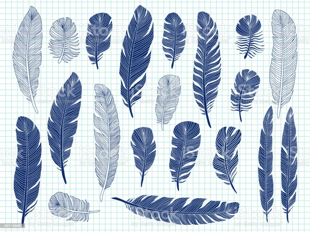 Notebook And Pen Sketch Stock Vector Art More Images Of: Ballpoint Pen Drawing Bird Feathers Big Set On Notebook