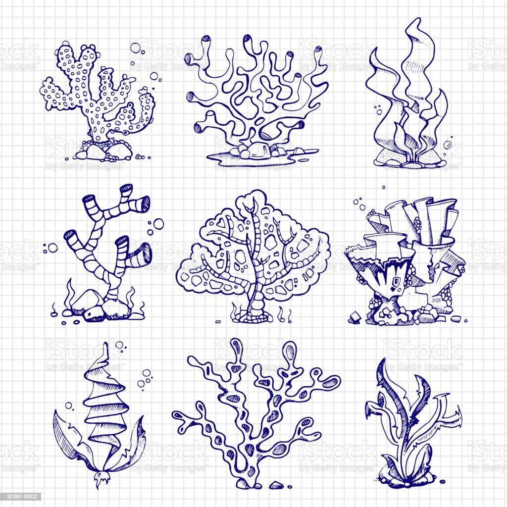 Zeichnen Von Algen Korallen Unterwasserpflanzen Kugelschreiber Stock