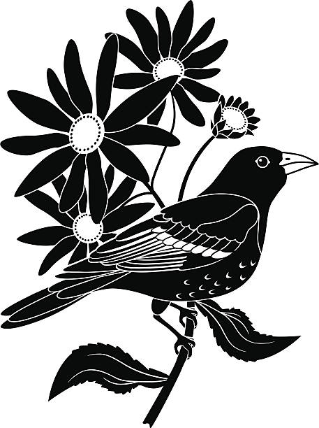Baltimore oriole and black eyed susan vector art illustration
