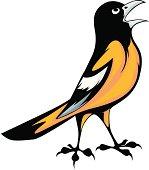 istock Baltimore Oriole Bird Illustration 156047834