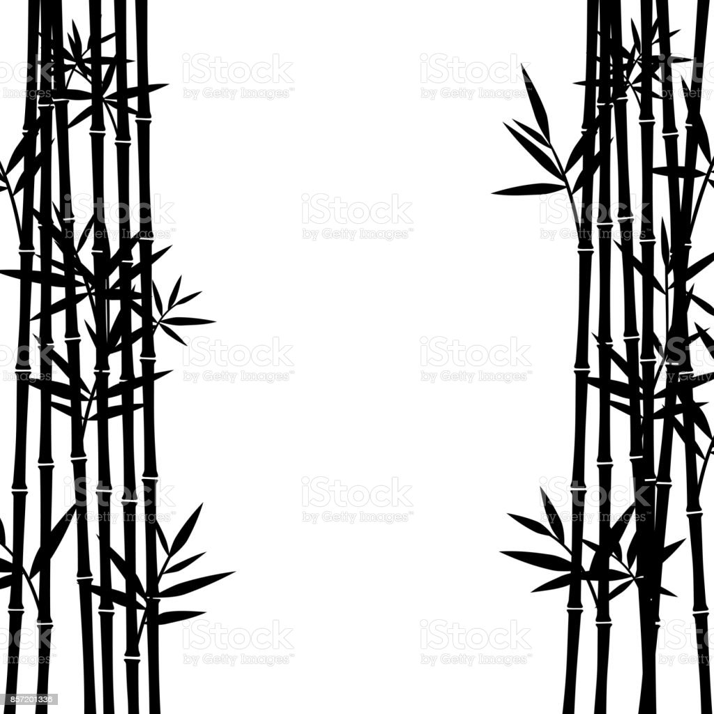 Bamboo background. Vector vector art illustration
