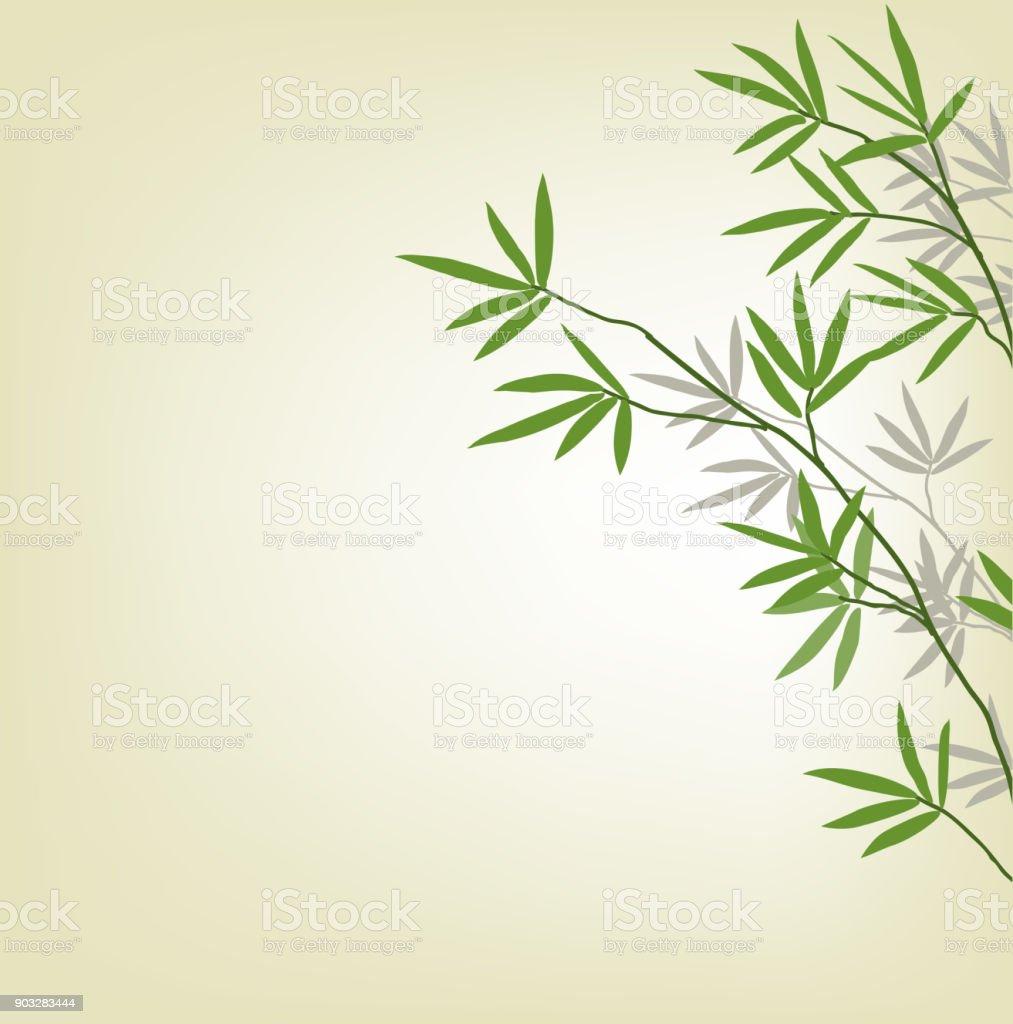Bamboo branches, design element. Illustration whith copy space vector art illustration