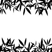 Bamboo branches, leaves