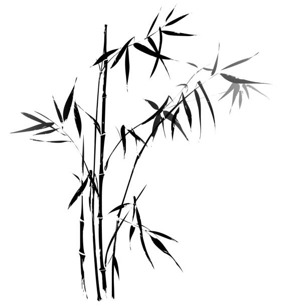Bamboo branches outlined in black vector art illustration