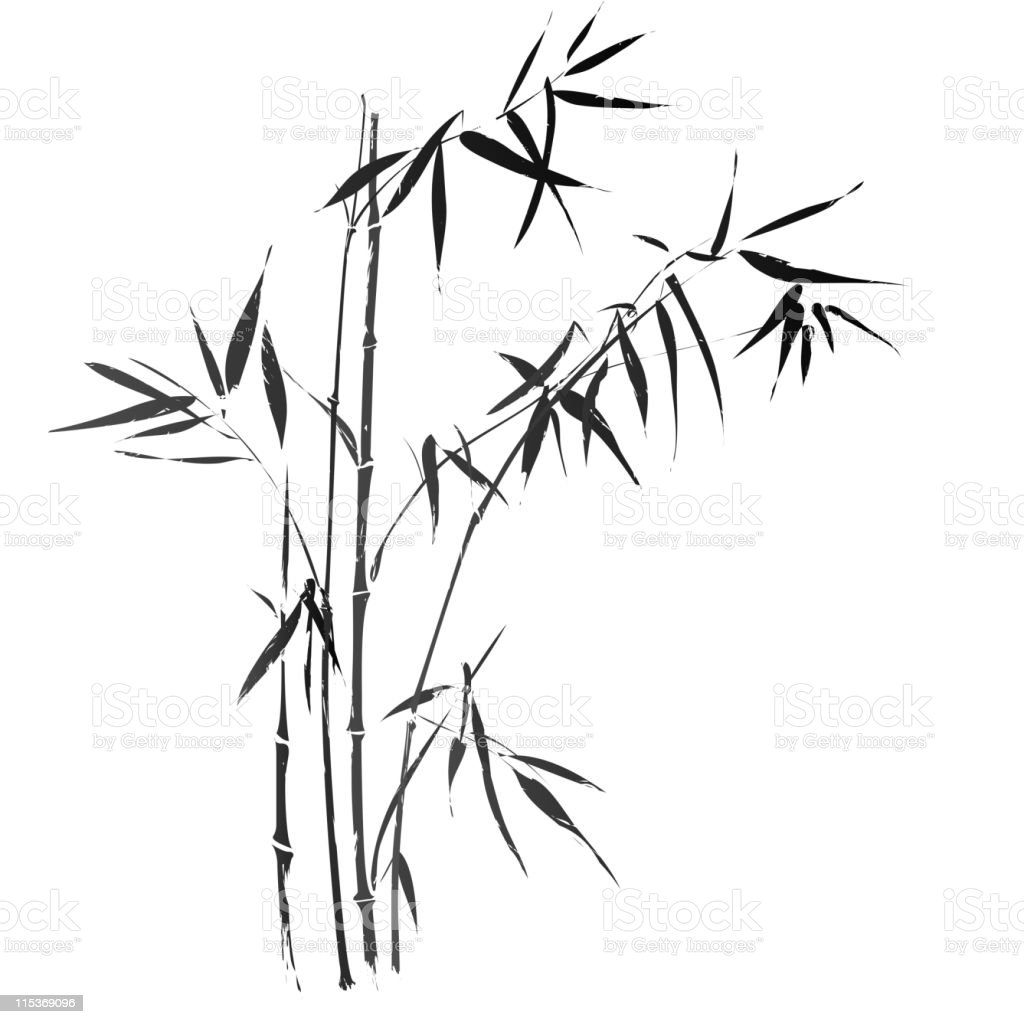 Bamboo branches vector art illustration