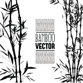 Bamboo bush, ink painting over the white background