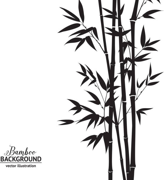 Bamboo bush Bamboo bush, ink painting over white background. Vector illustration. bamboo material stock illustrations