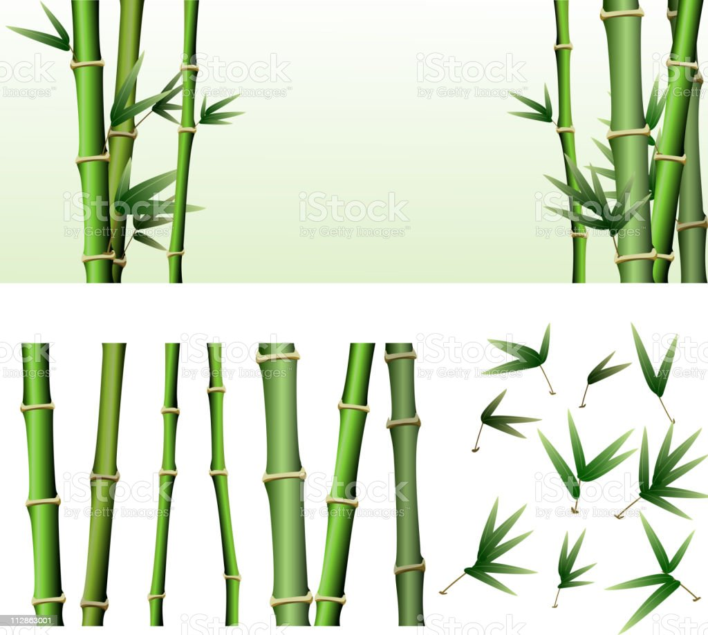 Bamboo Design Elements vector art illustration