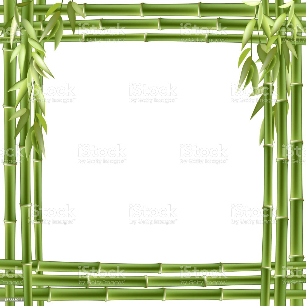 Bamboo frame. Vector background royalty-free stock vector art